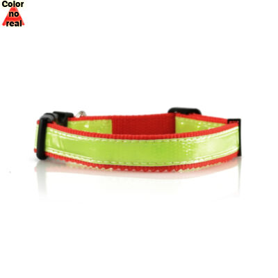 Collar Muttley